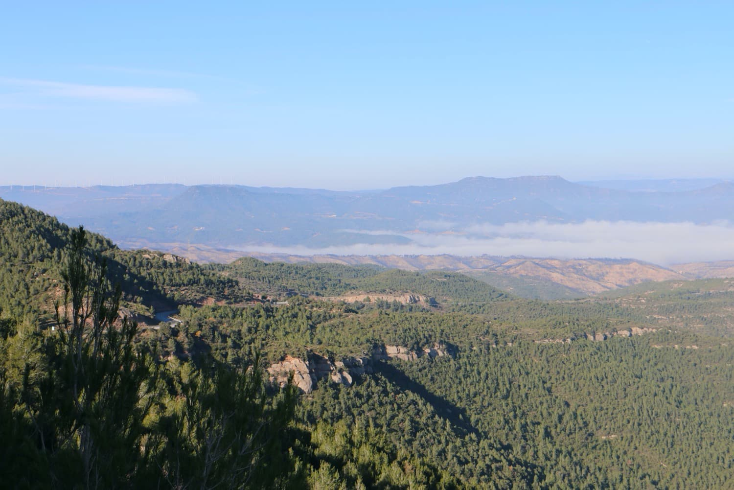 The fog covers towns such as Sant Salvador de Guardiola, Salelles or Manresa, among many others.