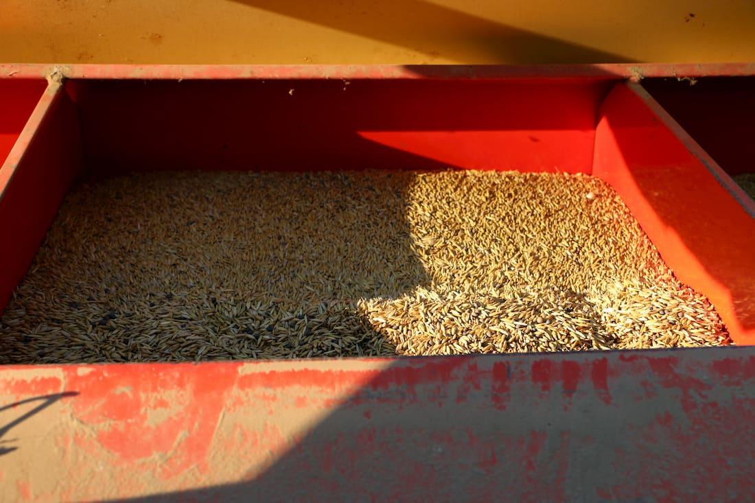 Vista del interior de un cajón de la sembradora.